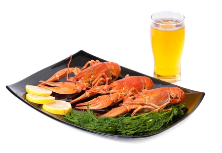 Plate of red boiled lobsters with dill and glass of beer. Luxury diet meal photo