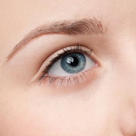 cejas: Hermosa joven aplicar cosm�ticos pincel - retrato cerca de la zona de sombra de ojos