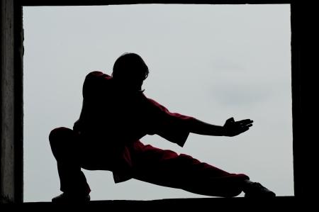 kick: Guerrieri Shaolin wushoo uomo silhouette pratica marziale d'arte all'aperto. Kung fu