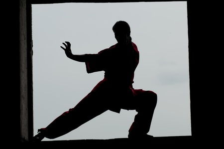 Shaolin warriors wushoo man silhouette practice martial art outdoor. Kung fu Stock Photo - 12535610