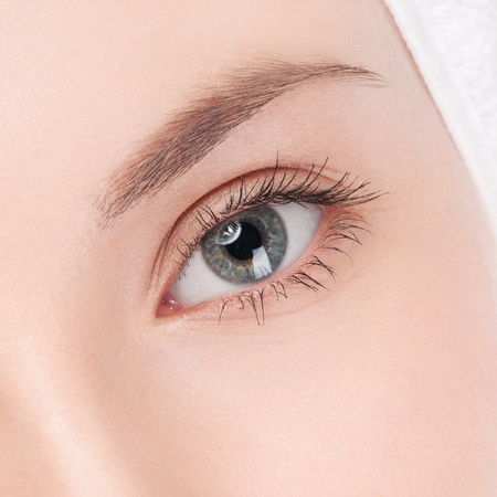 Close-up portrait of woman eye with perfect health skin of face. Isolated on white photo