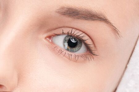 Close-up portrait of woman eye with perfect health skin of face. Isolated on white Stock Photo - 15262775