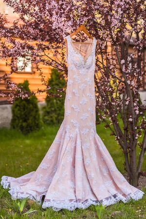 wedding dress on the tree in the wooden house Imagens