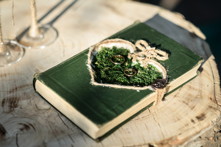 background summer: wedding rings on the grass in the stylized book
