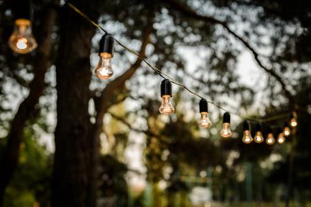 木、結婚式の中で森林の中に張らするライトの鎖 写真素材