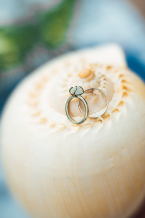 gold wedding rings on the sea shell Banque d'images - 119009249