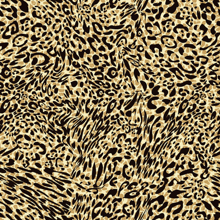 animales safari: estampado de leopardo de animal transparente Foto de archivo