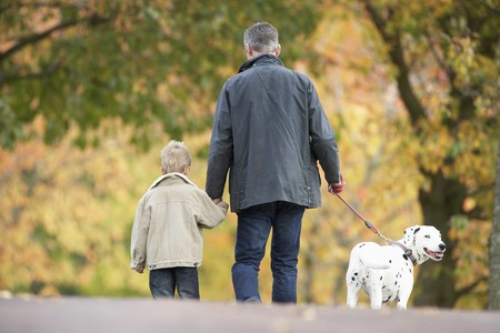 Man With Young Son Walking Dog Through Autumn Park photo