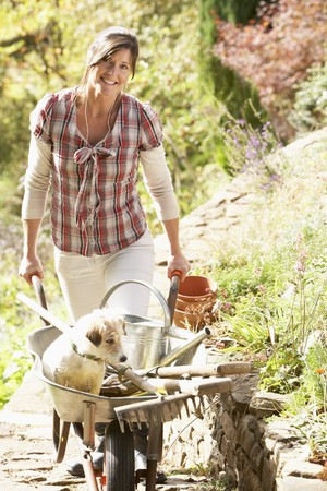 Woman With Dog Having Coffee Break Whilst Working Outdoors In Garden photo