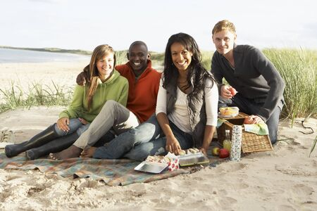 Group Of Young Friends Enjoying Picnic On Beach Together Stock Photo - 7175681