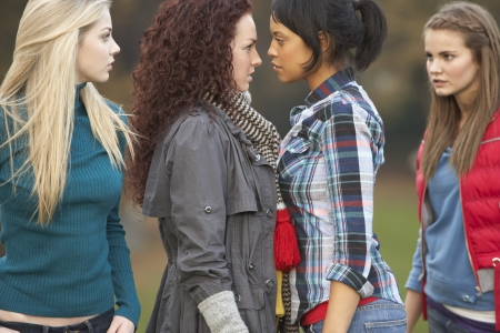 bully: Group Of Confrontational Teenager Girls