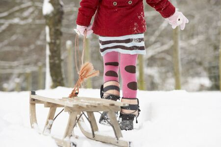 sledging people: Close Up Of Girl Pulling Sledge Through Winter Landscape
