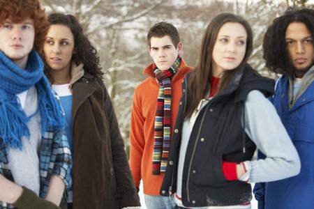 Group Of Teenage Friends Having Fun In Snowy Landscape Wearing Ski Clothing Stock Photo - 7178332