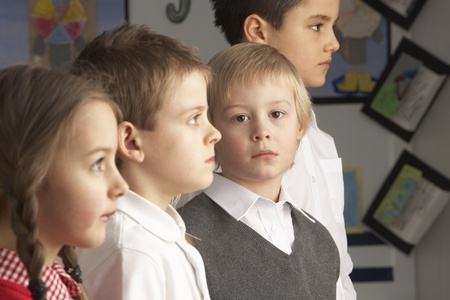 Portrait Of Group Of Primary Schoolchildren Standing In Classroom Stock Photo - 8453791