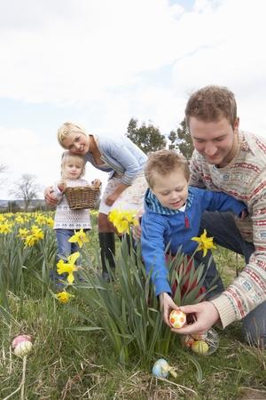 'easter egg': Family On Easter Egg Hunt In Daffodil Field