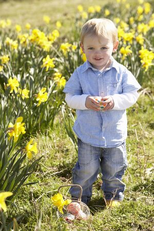 and four of the year: Young Boy On Easter Egg Hunt In Daffodil Field Stock Photo