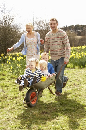 Father Giving Children Ride In Wheelbarrow Through Field Of Spring Daffodils photo