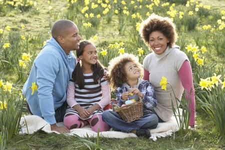 mixed family: Family Relaxing In Field Of Spring Daffodils Stock Photo