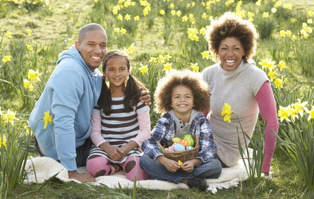 Family Relaxing In Field Of Spring Daffodils Stock Photo - 10199148