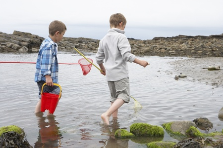 eight years old: Two boys collecting shells on beach Stock Photo