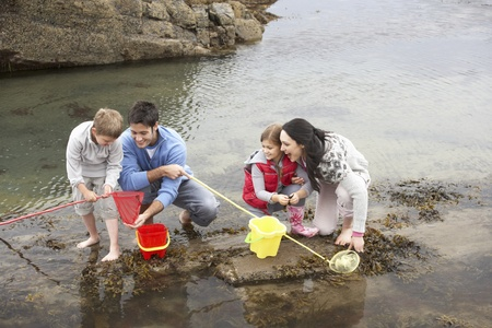 causasian: Young family at beach collecting shells Stock Photo