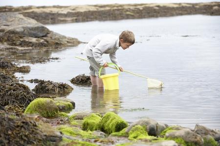 Boy on beach collecting shells photo