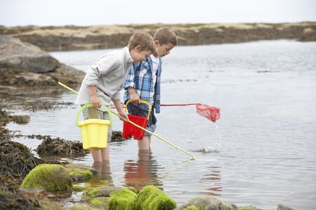 causasian: Two boys collecting shells on beach Stock Photo