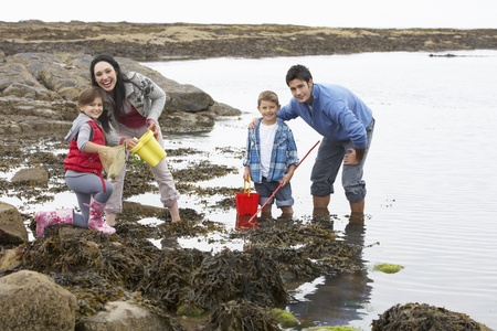 children pond: Young family at beach collecting shells Stock Photo