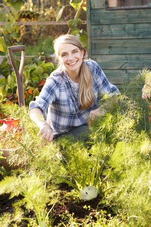 allotment: Woman working on allotment