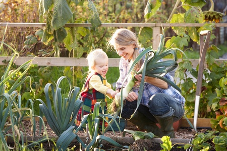 Woman working on allotment with child photo