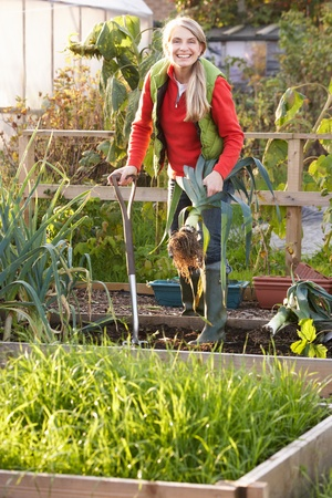 Woman working on allotment