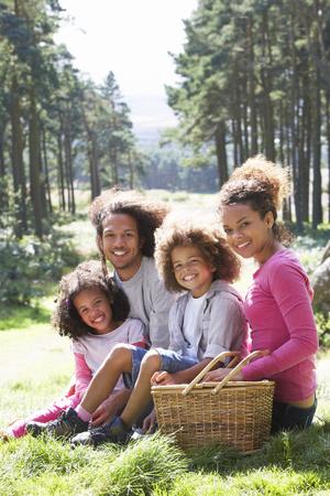 picnic blanket: Family Having Picnic In Countryside