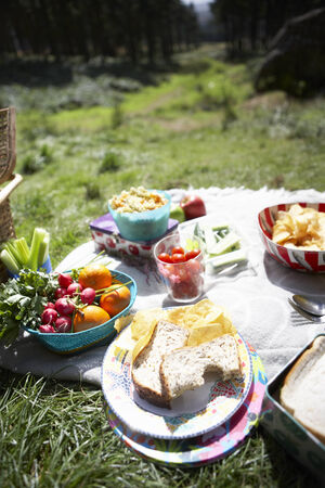 picnic blanket: Picnic Food Laid Out On Blanket Stock Photo