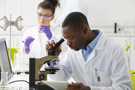 Les techniciens qui effectuent des recherches dans le laboratoire Banque d'images