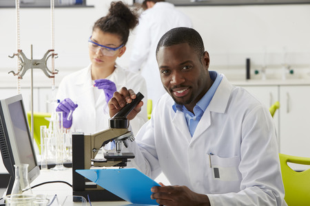 scientist woman: Technicians Carrying Out Research In Laboratory