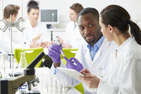 investigador cientifico: Grupo de t�cnicos que trabajan en el Laboratorio Foto de archivo