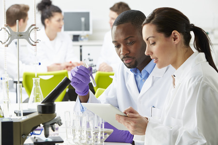 scientist woman: Group Of Technicians Working In Laboratory