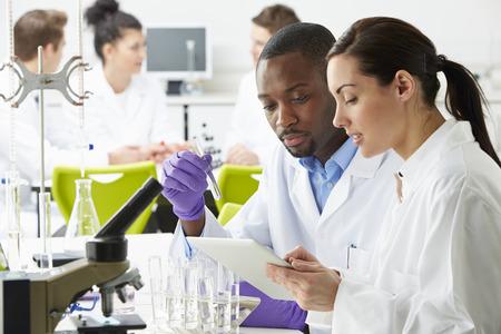 Groupe de techniciens travaillant en laboratoire
