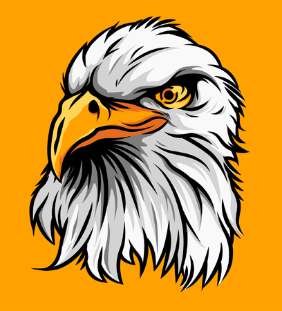 American Eagle Head Illustration Vector