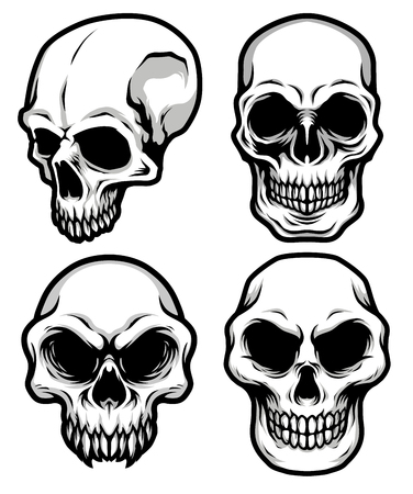 Collection of Detailed Classic Skull Head Black and White Illustration