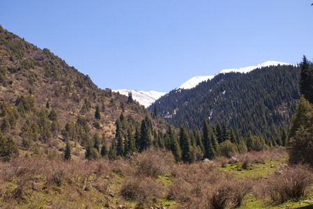 Mountain landscapes of Kyrgyzstan. Spring in the mountains. Near Kor Tol lake. Stock fotó
