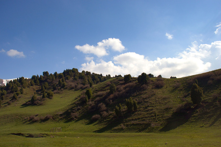 Mountain landscapes of Kyrgyzstan. Spring in the mountains. Near Supara Chunkurchak.