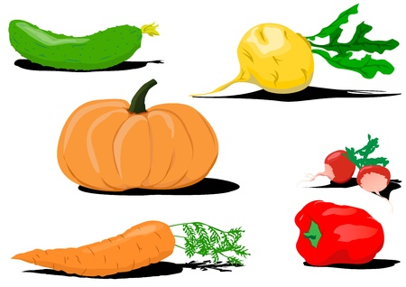 set from six vegetables useful to health Stock Vector - 18365985
