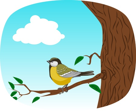 titmouse: the yellow titmouse sits for a tree branch with leaves Illustration