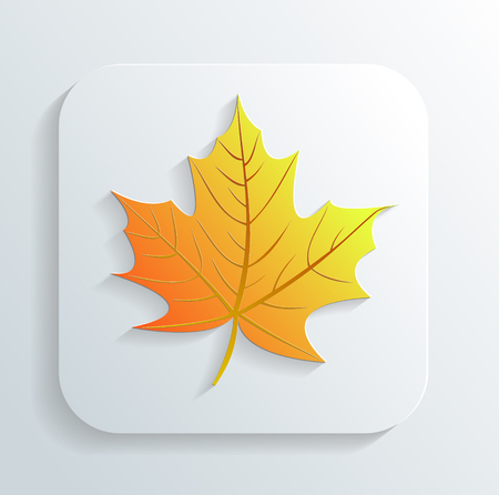 autumn leaf icon Vector