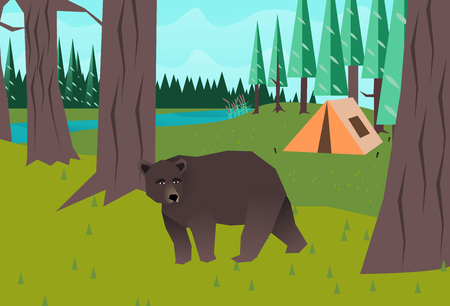 Bear in the woods vector Vector