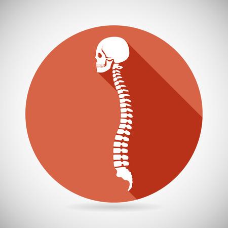 ortopedia: Ilustración del cráneo y de la columna vertebral icono símbolo Concepto plana diseño vectorial