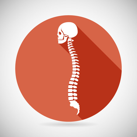Schedel en Spine pictogram symbool Concept Flat Design Vector Illustration Stockfoto - 39577269