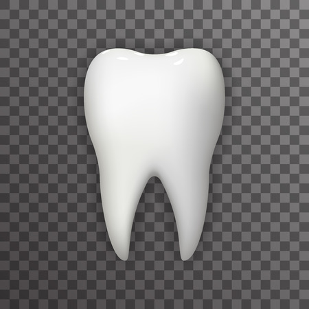 stomatology: Realistic Tooth Poster Transperent Stomatology Icon Template Background Mock Up Design Illustration