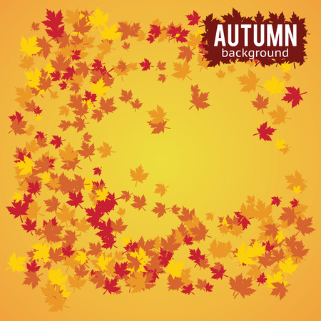 autumn abstract color beautiful background illustration